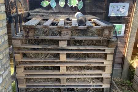Recycled pallets made into a bug house