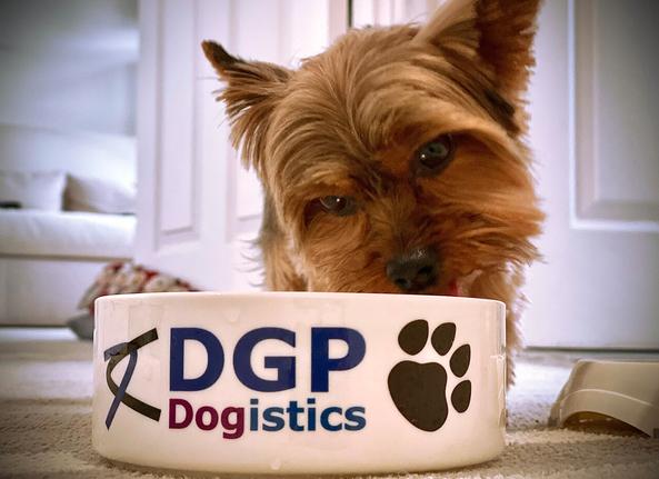 dgpdogistics